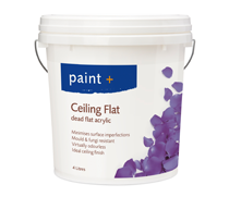 Paint Plus Ceiling_Flat.png