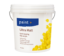 Paint Plus Ultra_Matt.png